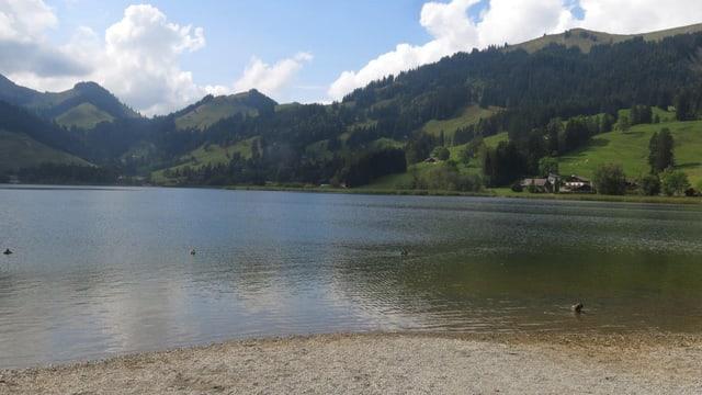 Blick über den See.