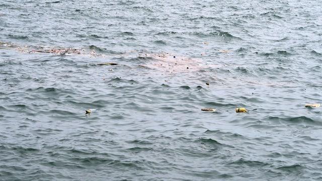 Eine Wasseroberfläche, auf der bunte Plastikteile schwimmen.