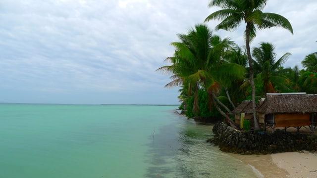 Küste in Kiribati