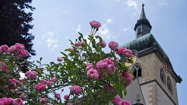 Katholische Kirche Bischofszell