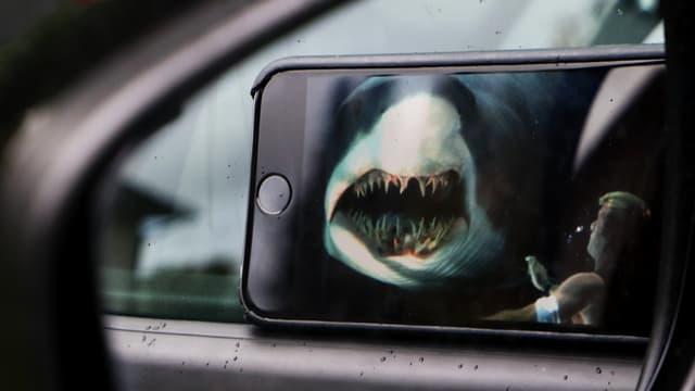 Ein Smartphone spielgelt sich in einem Autospiegel, darauf ist ein Haifisch zu sehen.