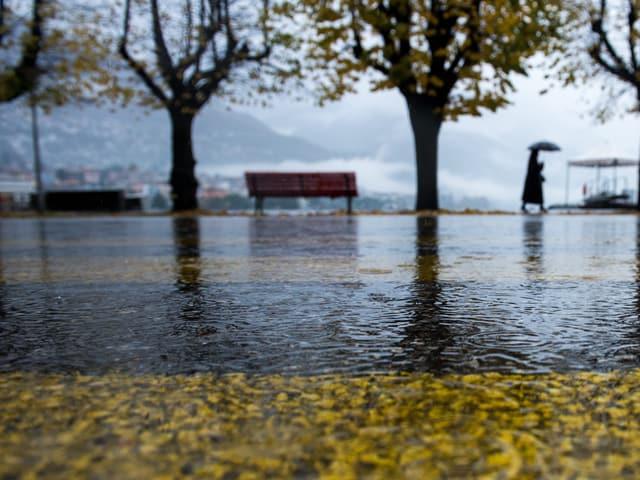 Der Lago Maggiore überflutete die Uferzone, eine Frau stapft durch das Wasser