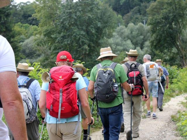 Wandergruppe auf dem Feldweg.