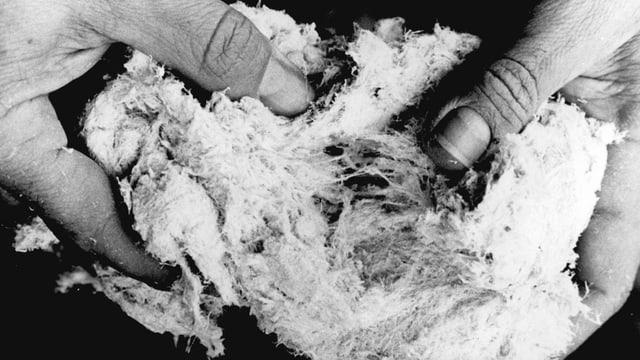 Schwarzweissfoto von zwei Händen, die einen ballen Asbest halten.