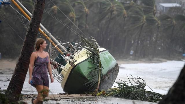 Purtret d'ina bartga cupitgà a la riva da Queensland.