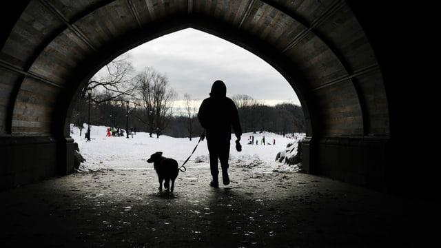 Mann mit Hund spaziert New York