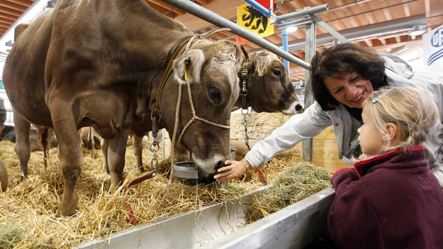 Ein Mädchen und eine Frau stehen bei einer Kuh.