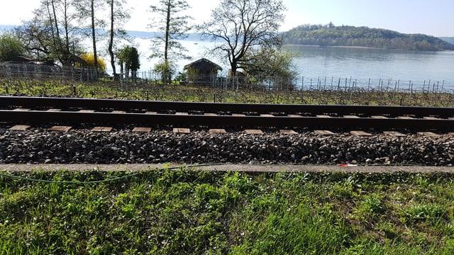 Bild eines Gleises mit Betonschacht daneben, in dem Glasfasern sind. Dahinter der Bielersee und die Petersinsel.