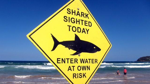 Tafel an Strand warnt vor Haien