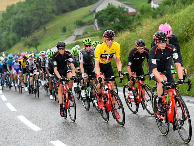 Das Feld der Tour de Suisse 2018.