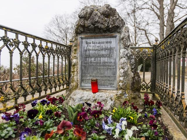 Grabstätte von Georg Buechner auf dem Germaniahügel in Zürich. Das Grab ist eingezäunt.