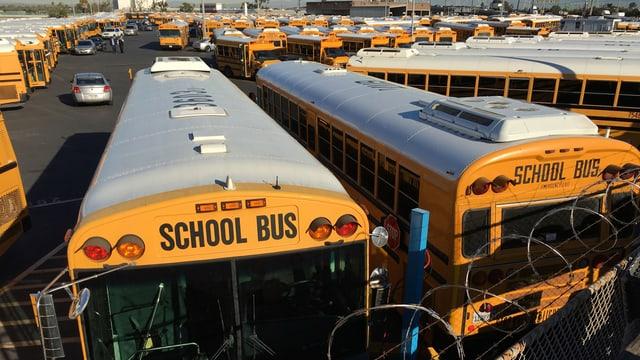 Bus da scola sin in parcadi