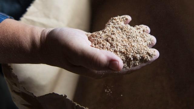 Eine Hand hält gemahlenes Getreide.