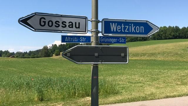Ein Wegweiser zeigt nach Gossau, einer nach Wetzikon.