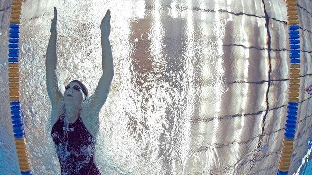 Eine Schwimmerin in einer Schwimmbahn.
