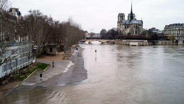 Seine mit überschwemmtem Flussufer, im Hintergrund Notre-Dame.