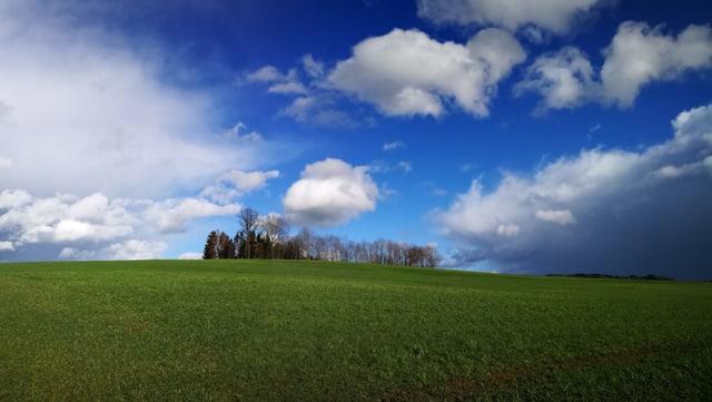 Verschiedene Wolken am Himmel, dazwischen klares blau, unten eine grüne Wiese und eine Baumgruppe.