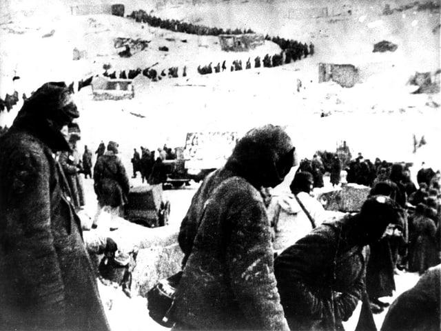 Lange Reihe von Soldaten. Mehrere hundert Mann in einer Linie.
