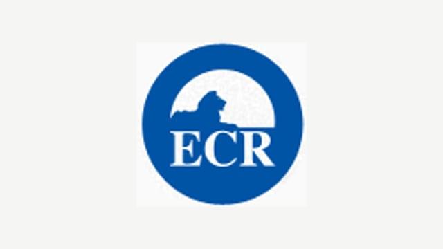 Logo der ECR-Fraktion