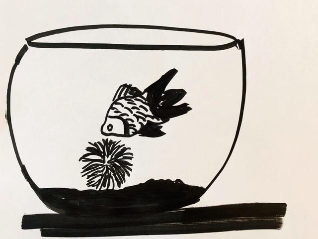 Zeichnung eines Goldfisches und einer Marimo-Alge