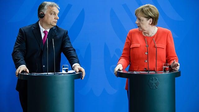 Orban und Merkel geben Auskunft.