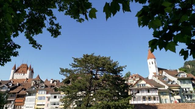 Durch die Blätter eines Baumes hindurch ist die Altstadt Thuns und ein Schloss zu sehen.