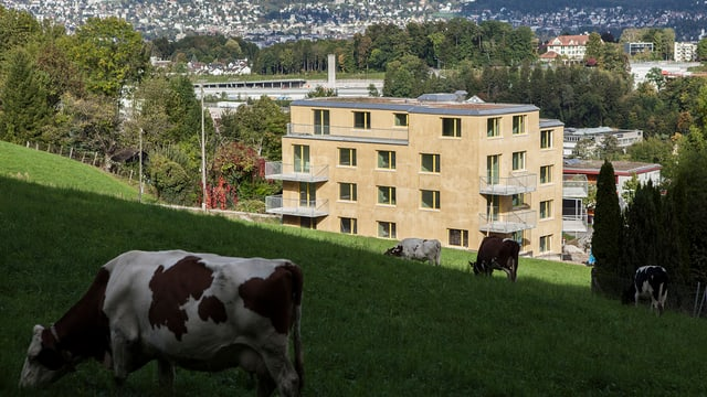 Das MCS-Haus am Rebenweg in Zürich-Leimbach.