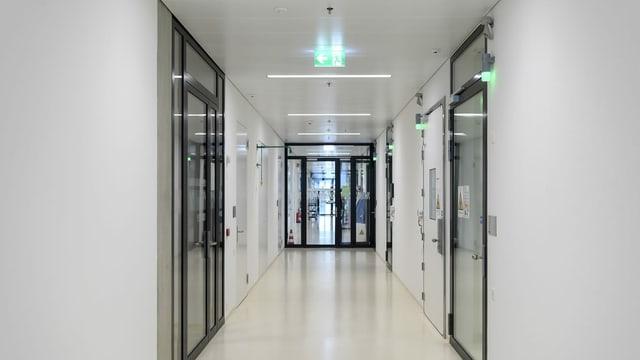 Das Labor innerhalb von Sitem-Insel, dem Schweizer Zentrum für Translationale Medizin.