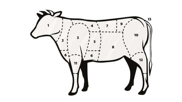 Eine nummerierte Kuh