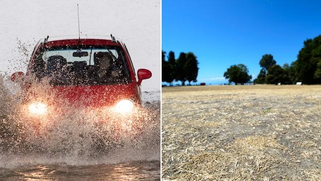 Auto auf einer überfluteten Strasse. Ausgetrocknetes Feld.