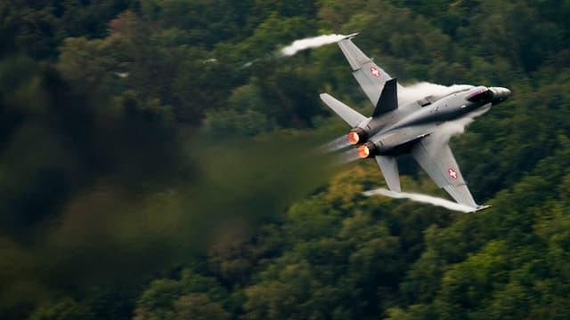 Eine F/A-18 der Schweizer Luftwaffe fliegt eine Kurve. Im Hintergrund ist ein Wald zu sehen.