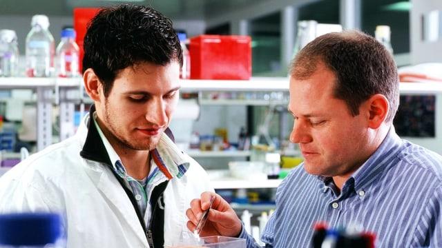 Institutsleiter Daniel Legler (rechts) und sein Doktorand Mark Hauser am Biotechnologie Institut Thurgau.