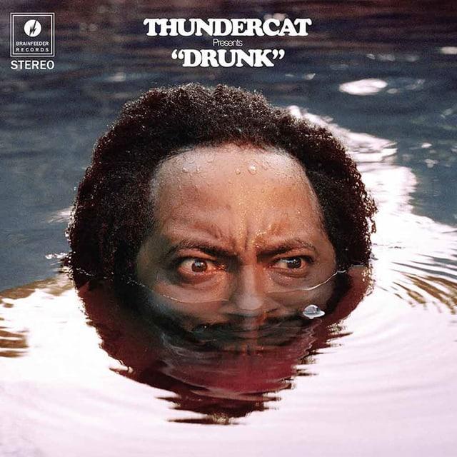 Thundercat im Wasser bis über beide Ohren.