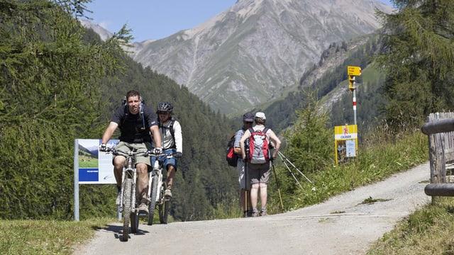 Mountainbiker und Wanderer kreuzen sich auf einem Wanderweg im Unterengadin.