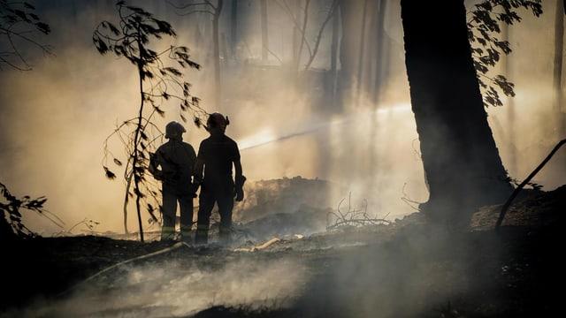 Zwei Feuerwehrmänner löschen im Wald, dort herrscht dicker Rauch.