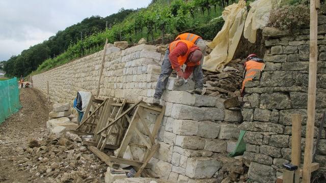 Seit 2010 wurden beim Schloss Kastlen 220 Quadratmeter Trockenmauern wieder instand gestellt.