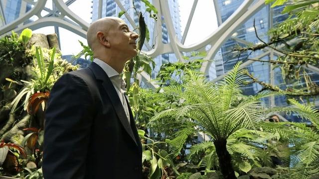 Jeff Bezos läuft an Grünpflanzen vorbei.