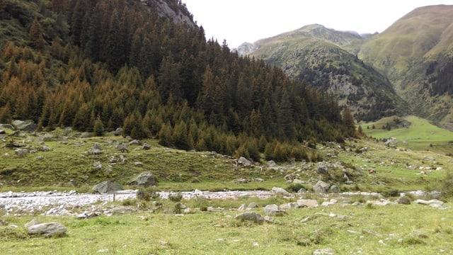 La Val Cristallina.