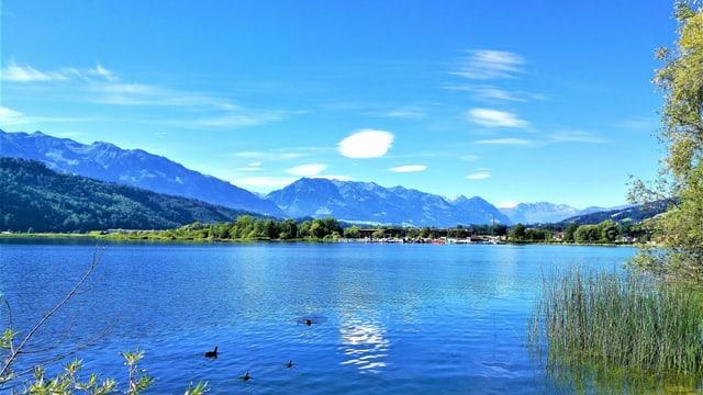 Der blaue Alpnachersee mit einem blauen Himmel und ein paar kleinen Föhnwolken.