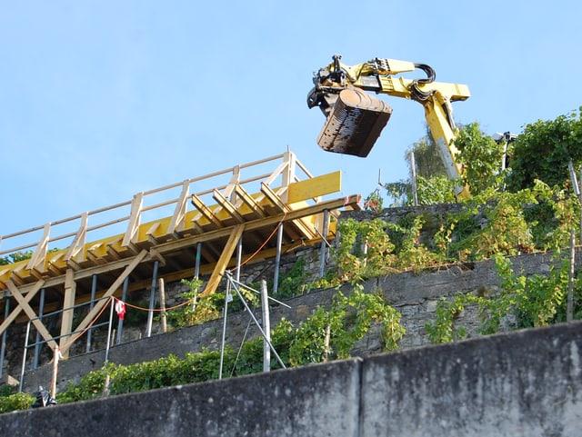 Steil, eng und mitten in den Rebstöcken: Die Baustelle im Rebberg Oberhofen ist ausserordentlich kompliziert.