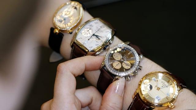 Vier edle Uhren an einem Unterarm.