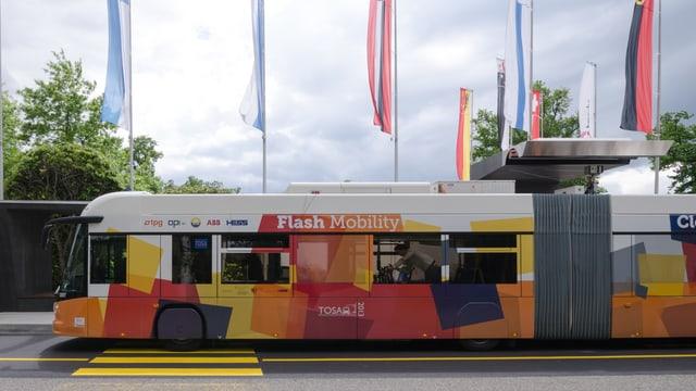 Bus an Bushaltestelle