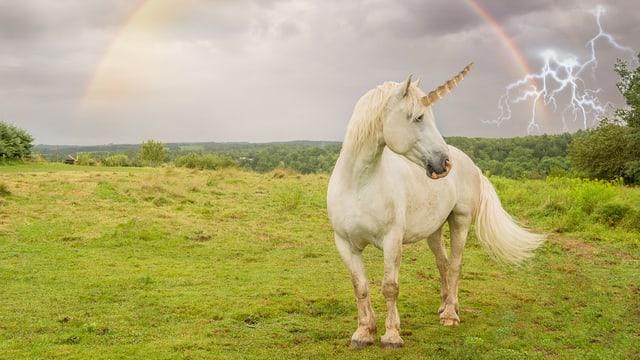 Ein Einhorn steht unter einem Regenbogen.