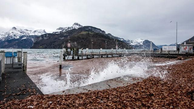 Eine Welle bricht an einem Seeufer, im Hintergrund sind Berge zu sehen.