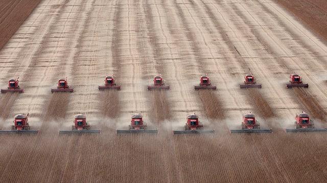 Zwei Reihen Traktoren fahren über ein Sojafeld in Brasilien