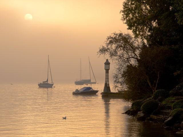 Nebel über dem Zürichsee. Durch den Nebel hindurch lässt sich die Sonnenscheibe ausmachen.
