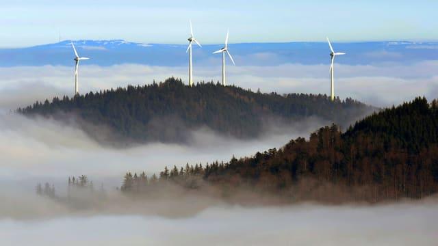 Windräder auf einer Hügellandschaft im Schwarzwald.
