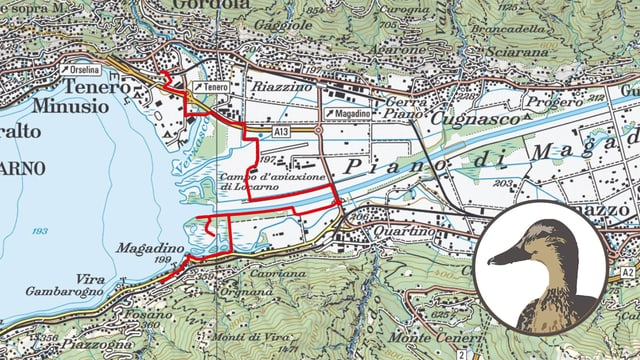 Karte mit Ente