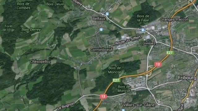 Im Nordwesten von Freiburg soll eine Grossgemeinde entstehen.