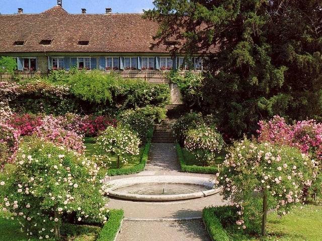 Aufnahme des Rosengartens der Kartause